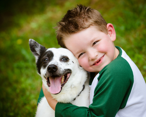 Protect your family with Greentech's flea and tick prevention service.
